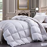 White Goose Down Comforter King Size Duvet Insert,Goose Down Duvet King Extra Warm,60