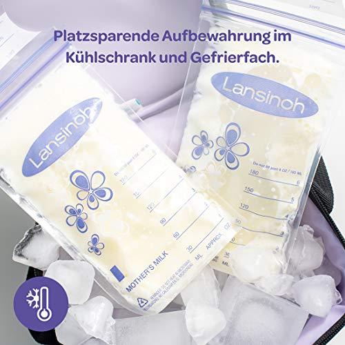 Lansinoh – Muttermilchbeutel - 6
