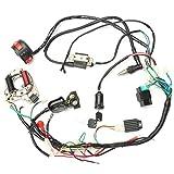 Alftek Juego de cables CDI para quad de 50 cc y 125 cc