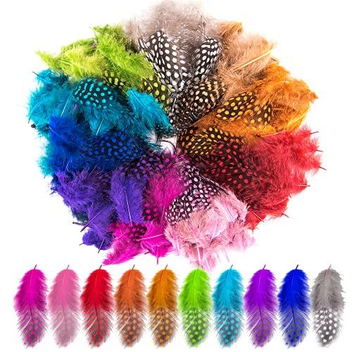 QUACOWW 200 plumas de colores para manualidades, plumas naturales indias, para manualidades,...
