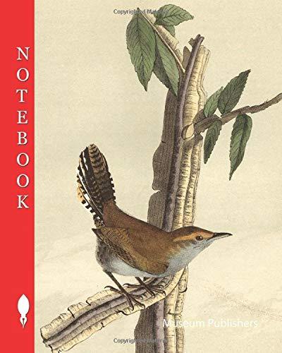 Notebook: Bewicks Wren - Iron-wood Tree, Wren, Thryomanes bewickii, Troglodytes bewickii, Ironwood Tree, 1856, John James Audubon (Pick up your pen and write)