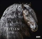 Friesen 2021 – Edle Pferde – Fotografiert von Christiane Slawik – DUMONT-Wandkalender – Format 38,0 x 35,5 cm