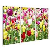 islandburner Cuadro Cuadros Impresión sobre Lienzo - Formato Grande - Cuadros Modernos Flores de Primavera Tulipanes de Colores