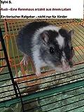 Rudi - Eine Rennmaus erzählt aus ihrem Leben.: Ein tierischer Ratgeber - nicht nur für Kinder
