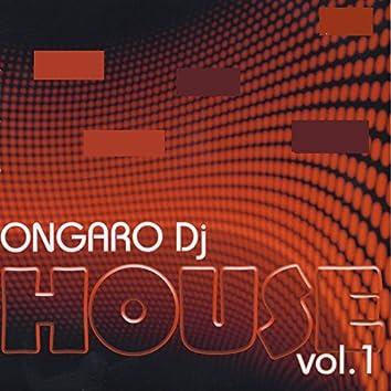 Ongaro DJ House, Vol. 1