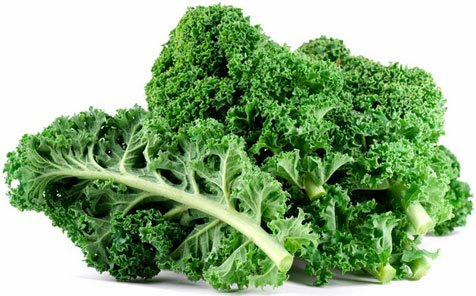 Brassica Leave Kale (Edible) Green Leaves, 40 Seeds Pack by Seedscare