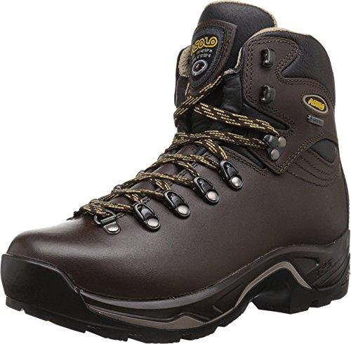 Asolo Women's Tps 520 Gv Evo Backpacking Boots Chestnut Brown 8