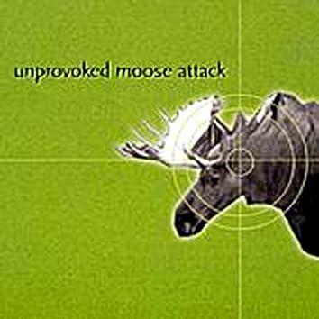 Unprovoked Moose Attack