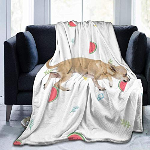 ujmki Hihuahuas - Manta de franela antipilling para perro, forro polar de alta calidad para niños de 50 a 40 pulgadas