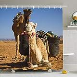 AdaCrazy África Egipto Sahara Caliente Desierto Tour Marruecos Animales Salvajes Fauna árabe Cabeza Bestia Naturaleza Safari Microfibra Baño Cortina de Ducha Cortina de baño Moderna 71x71 Pulgadas