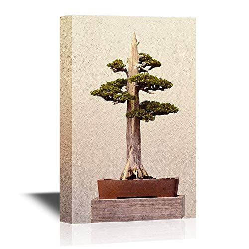 Bonsai Canvas Wall Art Poster Art Pictures Print Painting, Bonsai Plant with Broken Branch, Gallery Wrap Modern Home Decor, Stretched and Framed Ready to Hang 16x24inch