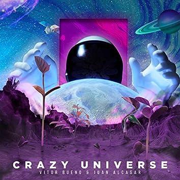 Crazy Universe