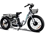 Emojo Caddy Electric Tricycle 24 Inch Fat Tire Electric Trike 3 Wheel Ebikes 48V...
