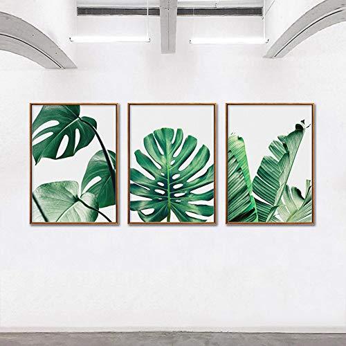 Canvas prints groene plant poster canvas afdrukken Monstera beeld wanddecoratie inkjet kunst schilderij moderne decoratie schilderijen 60x80cmx3pcs No Frame