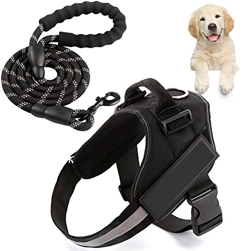 Xnuoyo Arnés con Correa De Pecho para Mascotas ArnéS para Perro Transpirable Y Ajustable, Adecuado para Perros Grandes, Medianos Y PequeñOs, Adecuado para Entrenamiento De Caminata Al Aire Libre(M)