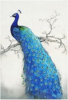 Best peacock diamond dotz Reviews