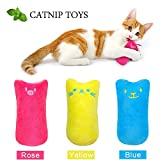 AINOLWAY Interactive Cat Catnip Toys Funny for Kitten Kitty Cat Kicker Teething Chew Playing 3 Pcs (Catnip Toy)