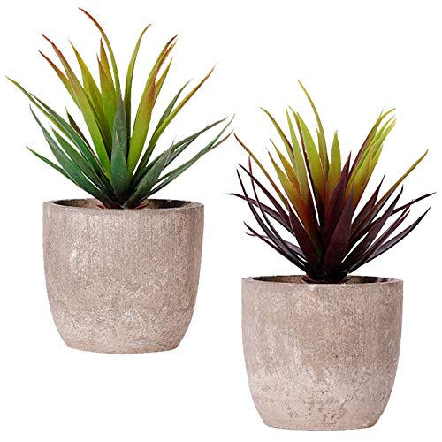 FagusHome 20cm Hoch Künstliche Pflanzen mit Topf 2 Stück Künstliche Sukkulenten Pflanzen Gefälschte Kakteen für Dekor