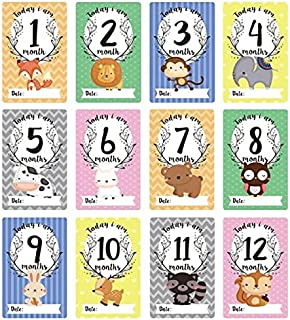 Stickers - 12 Pcs Month Sticker Baby Photography Milestone Memorial Monthly Newborn Kids Commemorative Card Number Photo P...