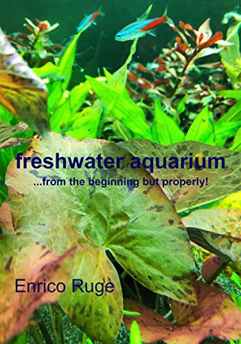 freshwater aquarium: from the beginning, but properly! (English Edition)