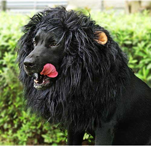Onmygogo Lion Mane Wig for Dogs with Ears, Funny Pet Costumes for Halloween Christmas (Size L, Black)
