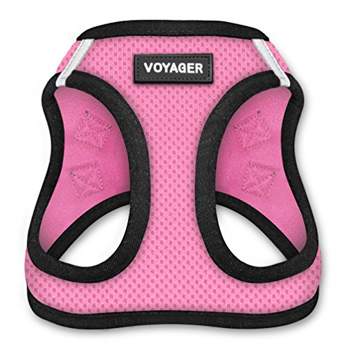 Voyager Step-in Air Dog Harness - All Weather Mesh, Step in Vest Harness for Small and Medium Dogs by Best Pet Supplies - Pink Base, XXXS (Chest: 9.5-10.5' Fit Cats) (207-PKB-XXXS)
