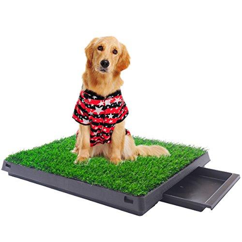 family pet training pads