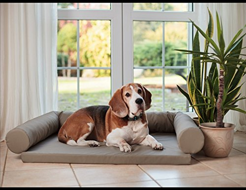 Artur Soja Lucky Ortho Orthopädisches Hundebett Schlafplatz Hundekissen Größe: M-XXL (L/XL 120x90cm, beige (Nr.21))
