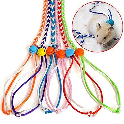 Haustier Ratte Maus Leine Blei Harness Seil Hamster Rat Einstellbare Seil Gelegentliche Farbe
