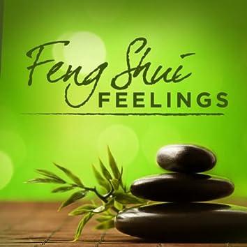 Feng Shui Feelings