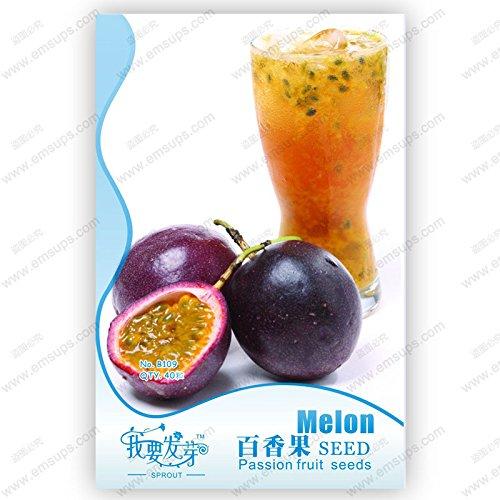 PRODUITS HOO - graines de fruits de la passion d'emballage d'origine graines biologiques Passiflora edulis nutritifs graines de fruits de jardin Granadilla - 40 pcs Nouvelle arrivée!