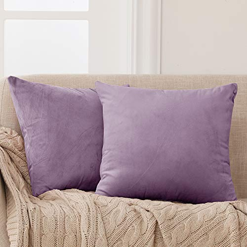 Deconovo Set di 2 Fodera Cuscino Divano con Cerniera Invisibile per Casa in Velluto 45x45cm Viola Chiaro
