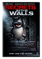 Secrets in the Walls [DVD] [Import]