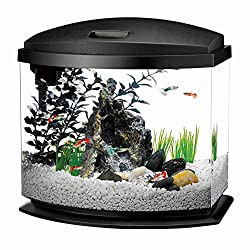 Aqueon LED MiniBow Aquarium