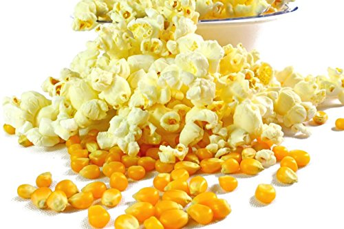 Premium Popcorn Kinopopcorn 2 x 500 Gramm / 1 Kg XXL 1:46 Popvolumen Top Angebot