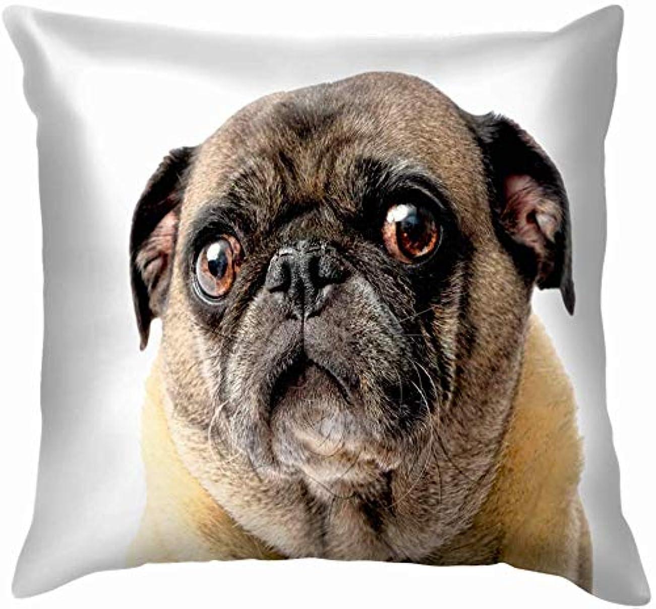 集団的高度メロディー白い動物に悲しいパグ犬野生動物おかしい自然スロー枕カバーホームソファクッションカバー枕ギフト45x45 cm