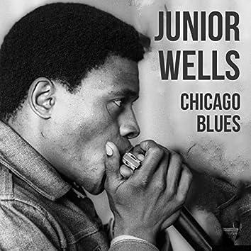 Junior Wells, Chicago Blues