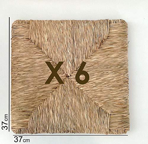 Asientos de paja trenzada de 37 x 37 cm, mod. 901 zf Pisa, recambio para silla, set de 6