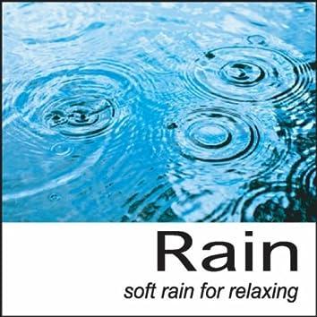 Rain: Soft Rain for Relaxing Rain Sounds, Nature Sounds, Rainfall, Rain Drops