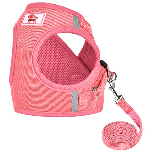 GAUTERF Dog Harnesses and Puppy Harness with Leashes Set, Adjustable Reflective Soft Corduroy Vest Fit Puppy Kitten Rabbit's Outdoor Harness, S (Chest: 10