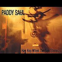 Hay Hay When the Sun Shines-Single