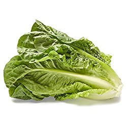 Romaine Lettuce, 1 Head