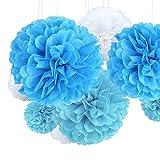 JaneYi - 21 pompones de papel de seda multicolor con flores de papel para decoración de 4 tamaños para bodas, cumpleaños, fiestas, etc. Decoración para mesa - azul claro y blanco