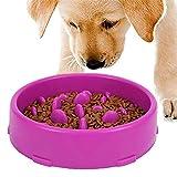 GWL Cuenco de Lenta Alimentación para Perros, Slow Eating Dog Bowl, Tazón de Antideslizante Interactivo Saludable Alimentador para Evitar el Ahogo y Comer Demasiado para Perros y Gatos (Púrpura)