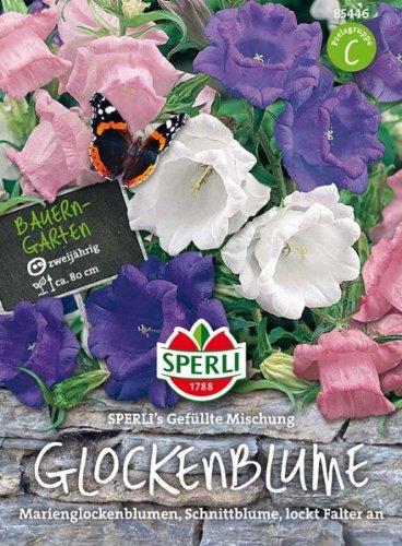 Sperli Glockenblume SPERLI´s Gefüllte Mischung