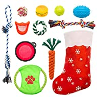 EXPAWLORER Dog Chew Toy Christmas Stocking Set - 11 Pieces Durable and Interesting Squeaky Cotton Rope Ball Toys Training Interaction and Dental Health for Medium Large Dogs
