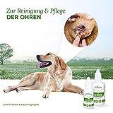 AniForte Ohrmilbenöl 50 ml bei Ohrmilben- Naturprodukt für Hunde, Katzen und andere Haustiere - 4