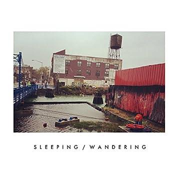 Sleeping/Wandering