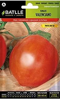 Amazon.es: Verdecora - Jardinería: Jardín
