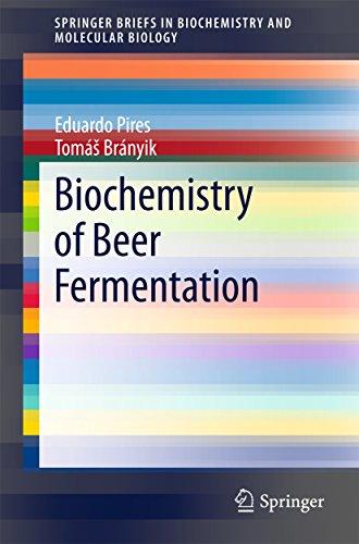Biochemistry of Beer Fermentation (SpringerBriefs in Biochemistry and Molecular Biology)
